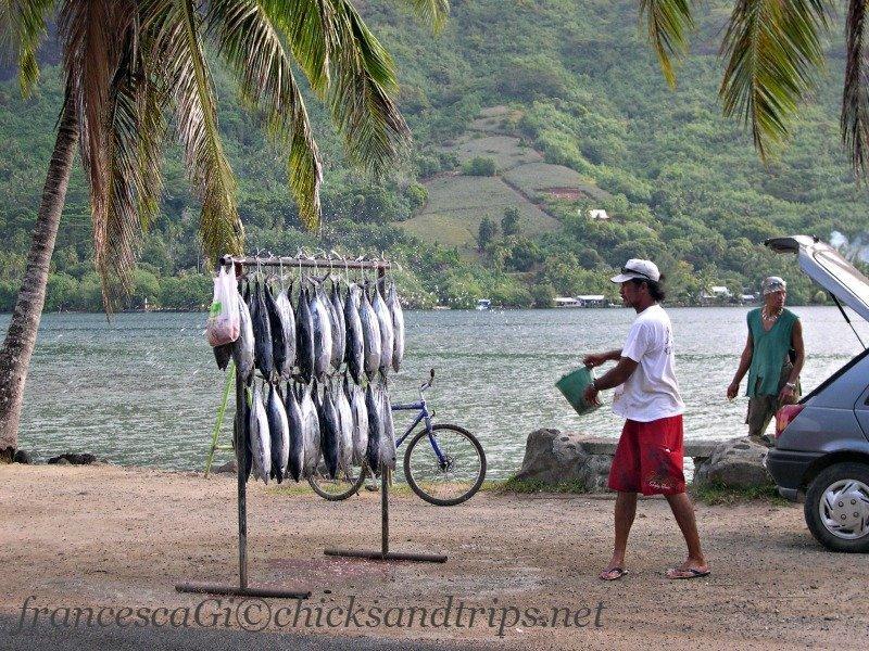 Venditore di pesce a Moorea
