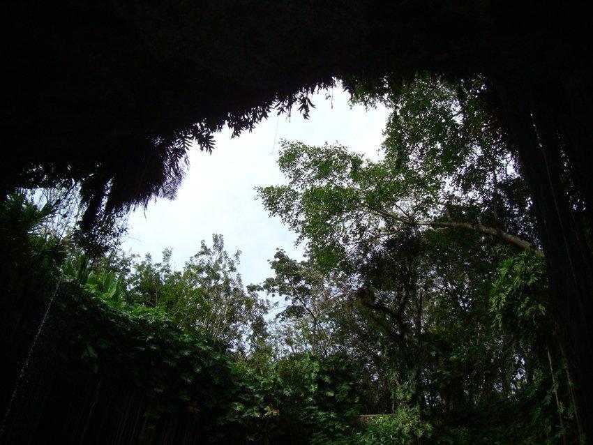 Cenotes Messico Yucatan