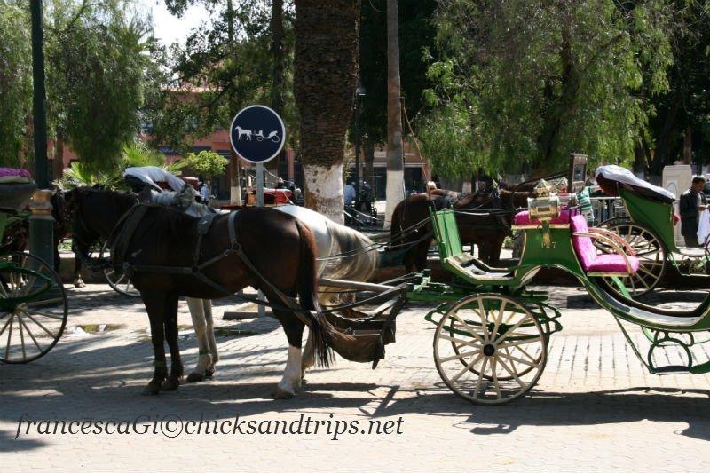 Carrozza a Marrakech