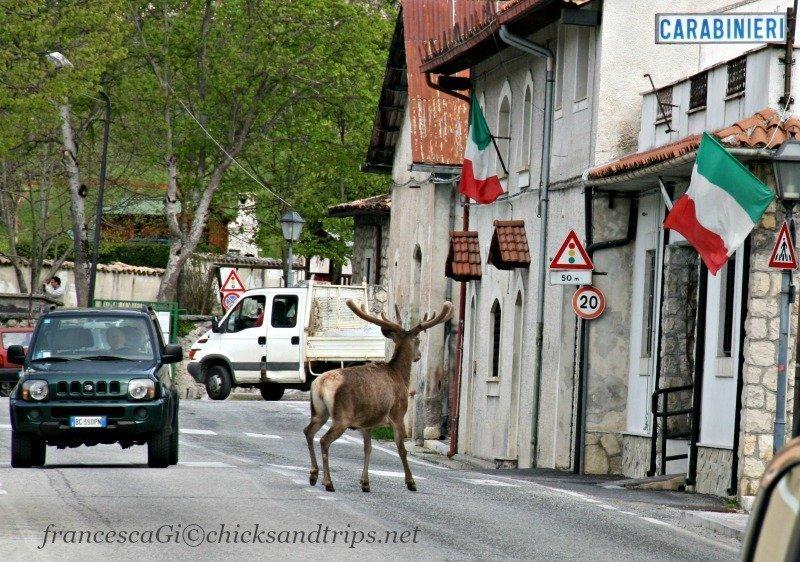 4 passi per Villetta Barrea