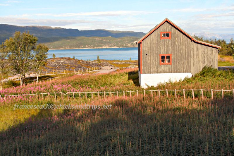 Viaggio in Lapponia (Norvegia e Finlandia): consigli sparsi