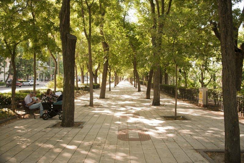 Madrid con pochi soldi 7