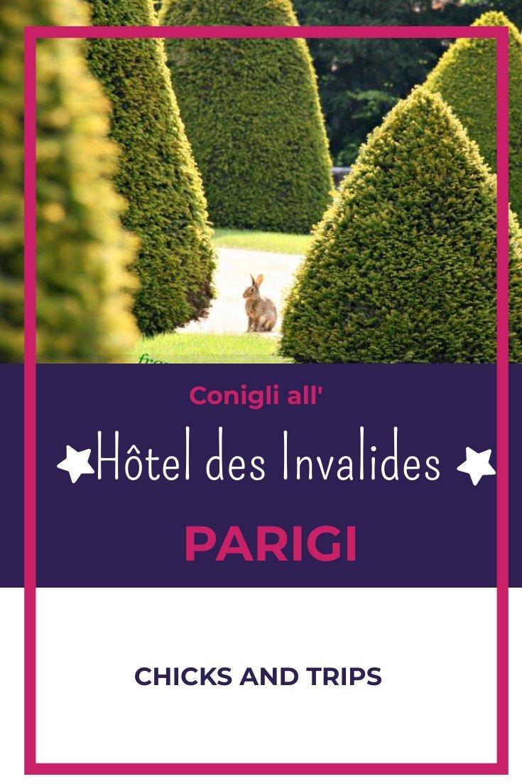 Hôteldes Invalides conigli parigi