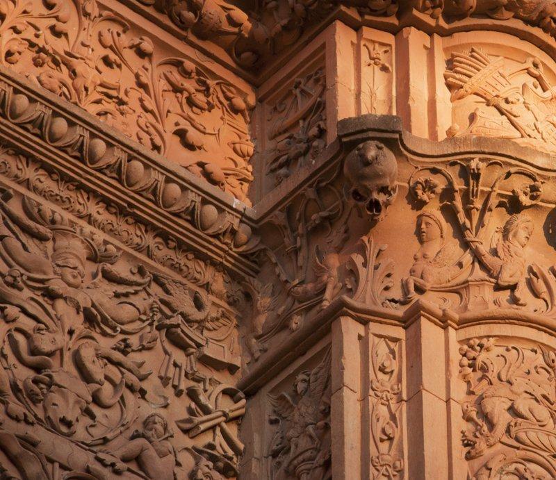 Salamanca rana