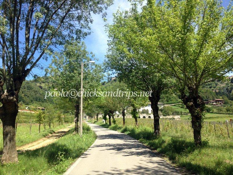 Il sentiero per il Monastero