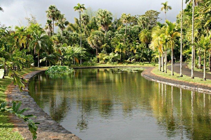 Giardino Botanico di Pamplemousses