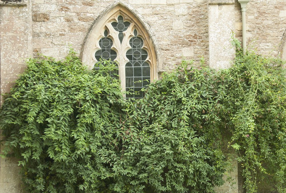 Lacock e i film di Harry Potter: guida completa a tutte le location