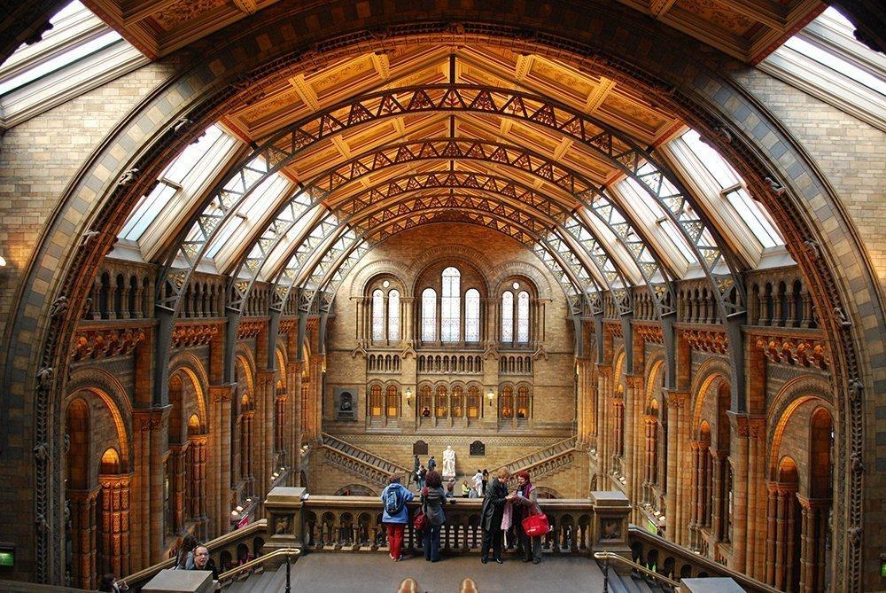 musei londra gratis natural history museum