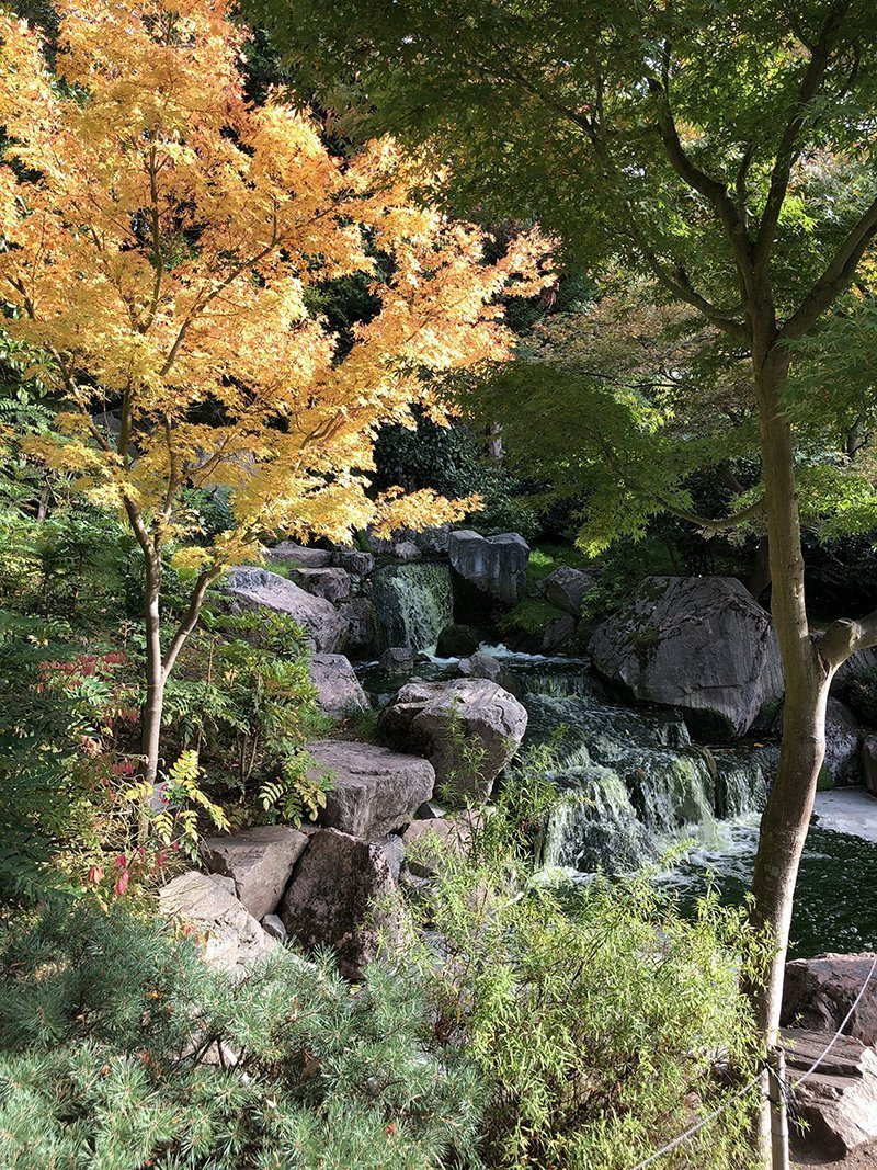 londra kyoto gardens holland park