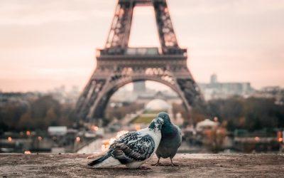 """Scoprire i musei meno famosi di Parigi: """"Tutto è bellezza"""""""