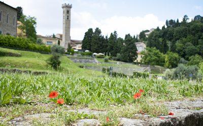 Cosa vedere vicino Firenze: alla scoperta di Fiesole e dell'area archeologica