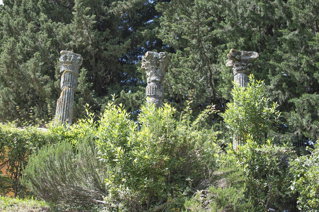 fiesole area archeologica toscana firenze