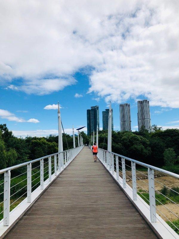 parchi pubblici seoul forest