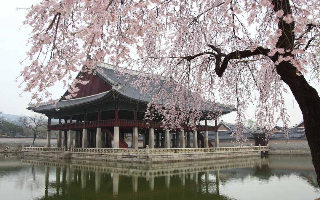 I 4 parchi pubblici più belli di Seoul